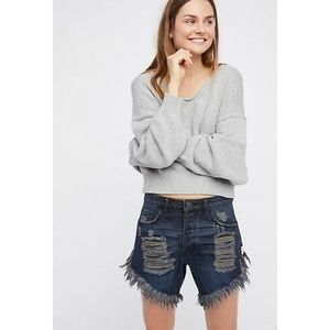 Free People One Teaspoon Frankies Cut-off Shorts
